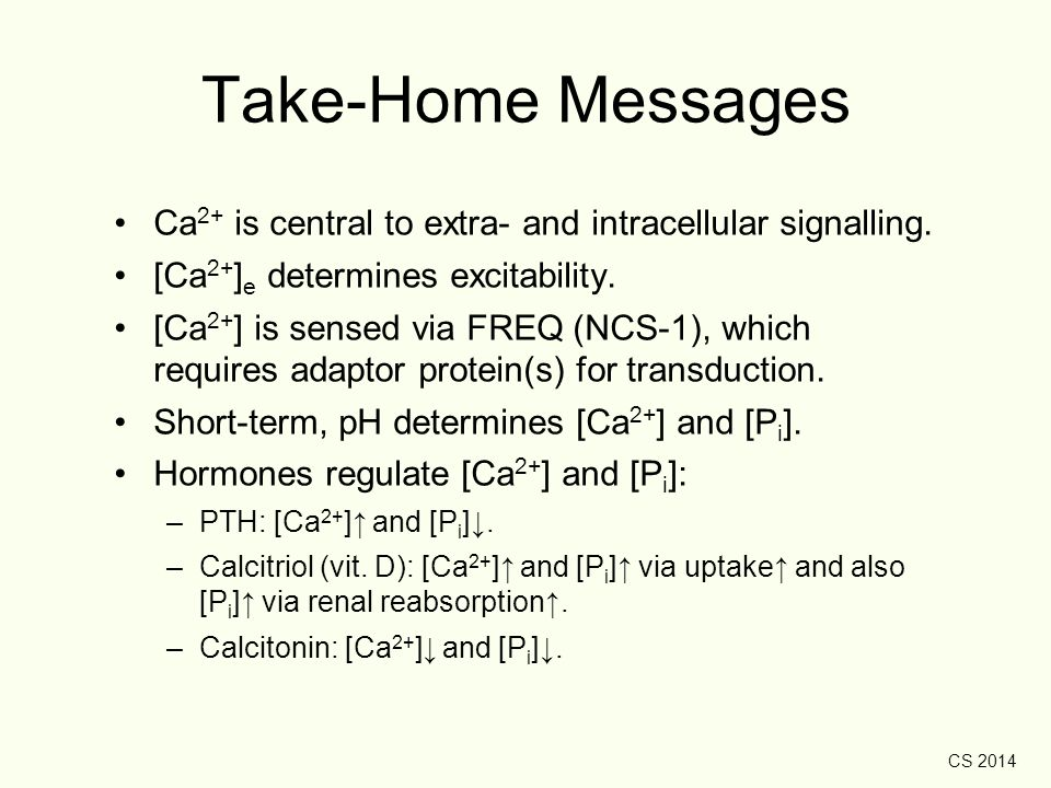Take-Home Messages Ca2+ is central to extra- and intracellular signalling. [Ca2+]e determines excitability.